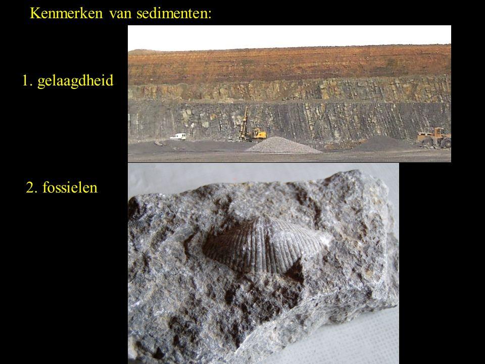 Kenmerken van sedimenten:
