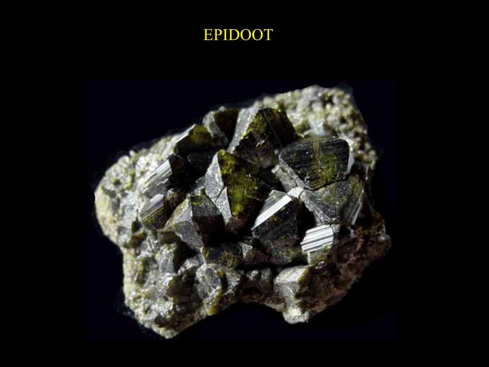 EPIDOOT