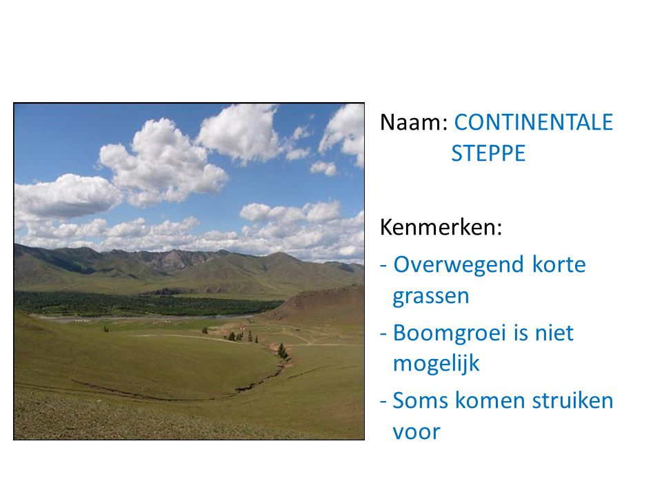 Naam: CONTINENTALE STEPPE