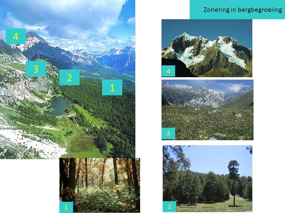 Zonering in bergbegroeiing