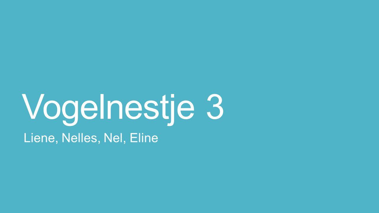 Vogelnestje 3 Liene, Nelles, Nel, Eline