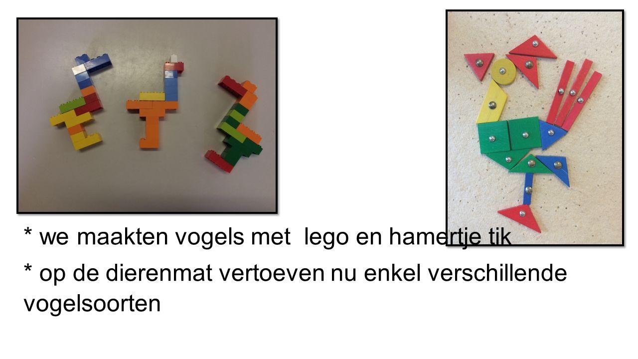 * we maakten vogels met lego en hamertje tik