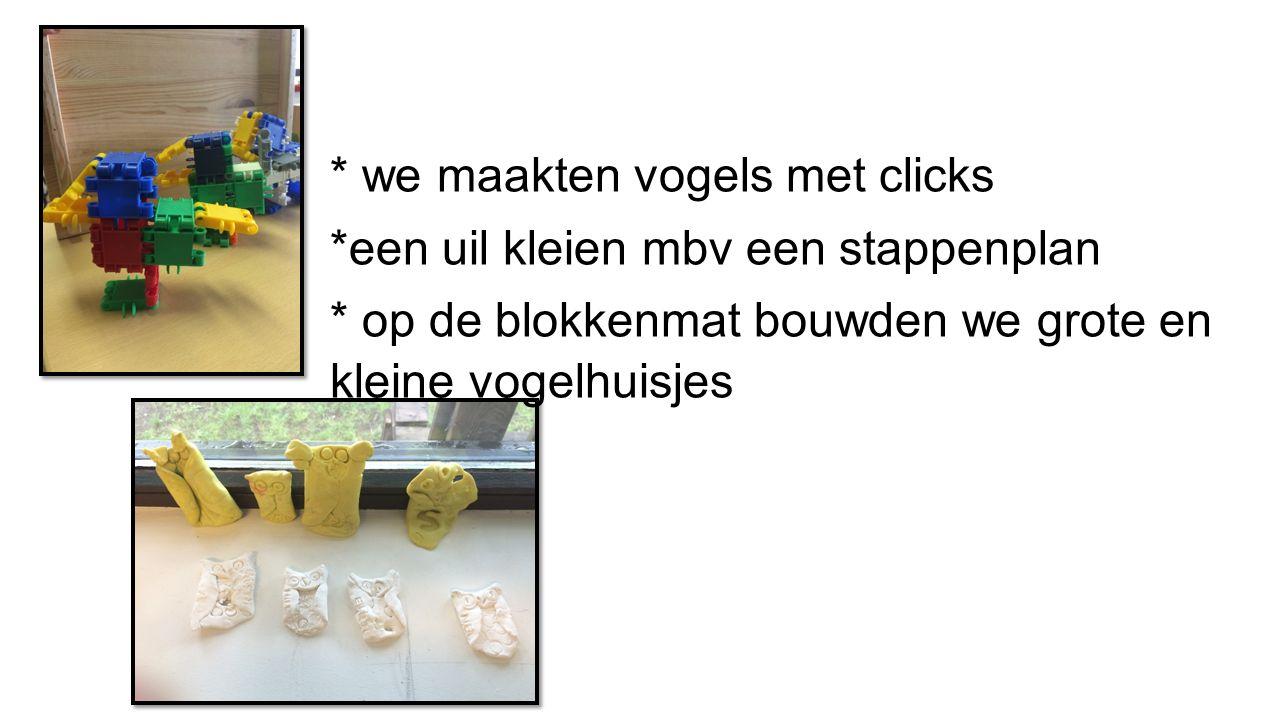 * we maakten vogels met clicks
