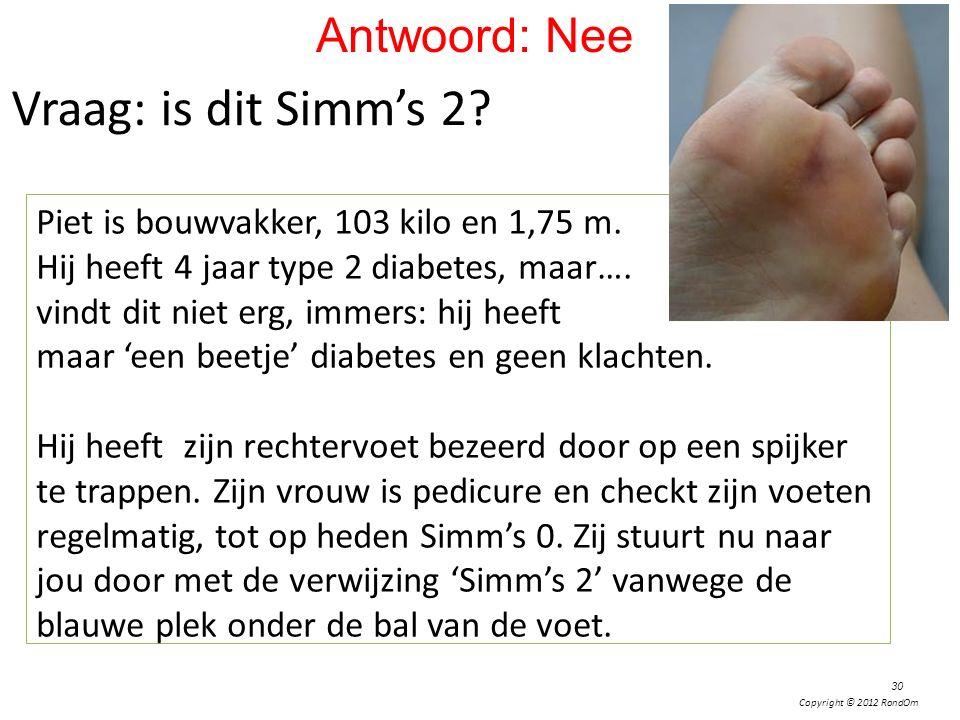 Vraag: is dit Simm's 2 Antwoord: Nee