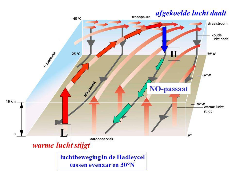 luchtbeweging in de Hadleycel