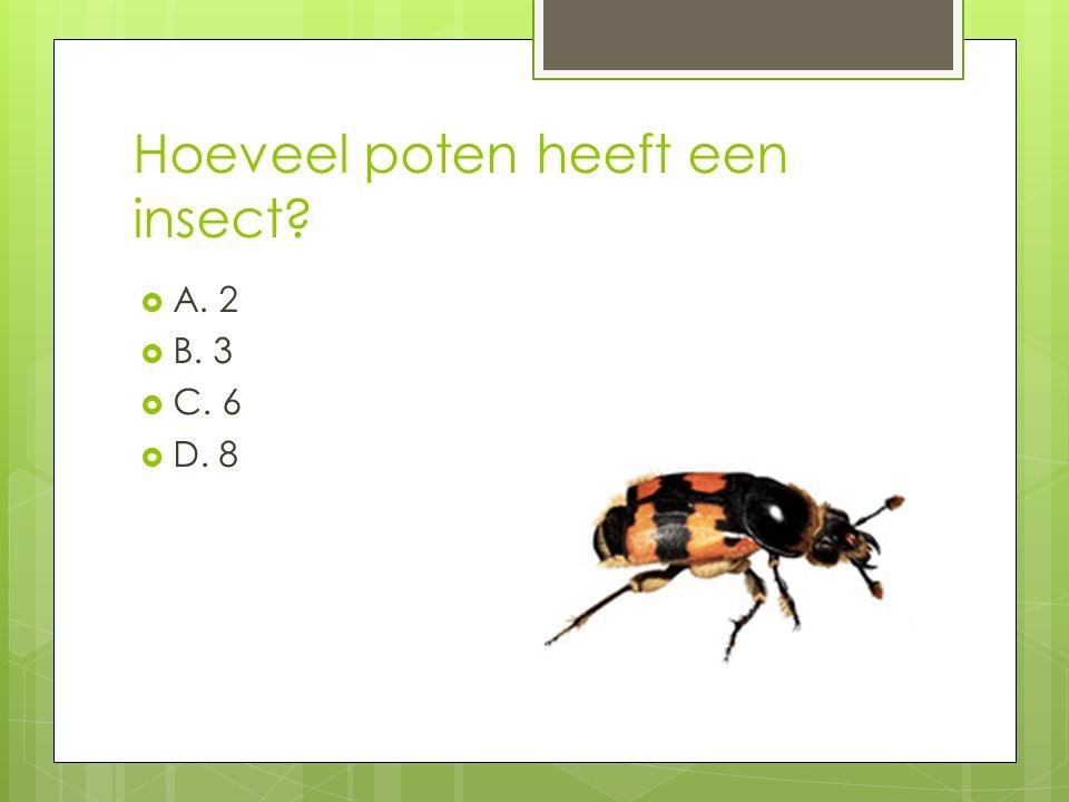 Hoeveel poten heeft een insect