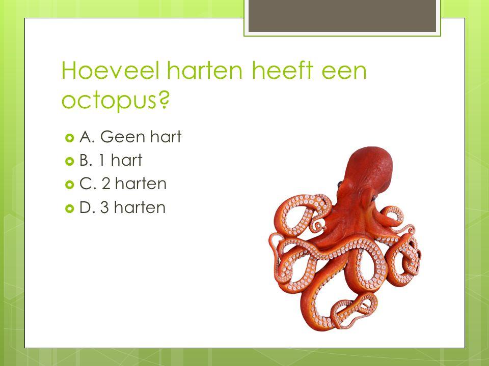 Hoeveel harten heeft een octopus