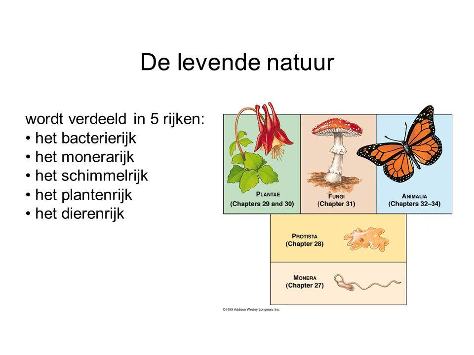 De levende natuur wordt verdeeld in 5 rijken: het bacterierijk