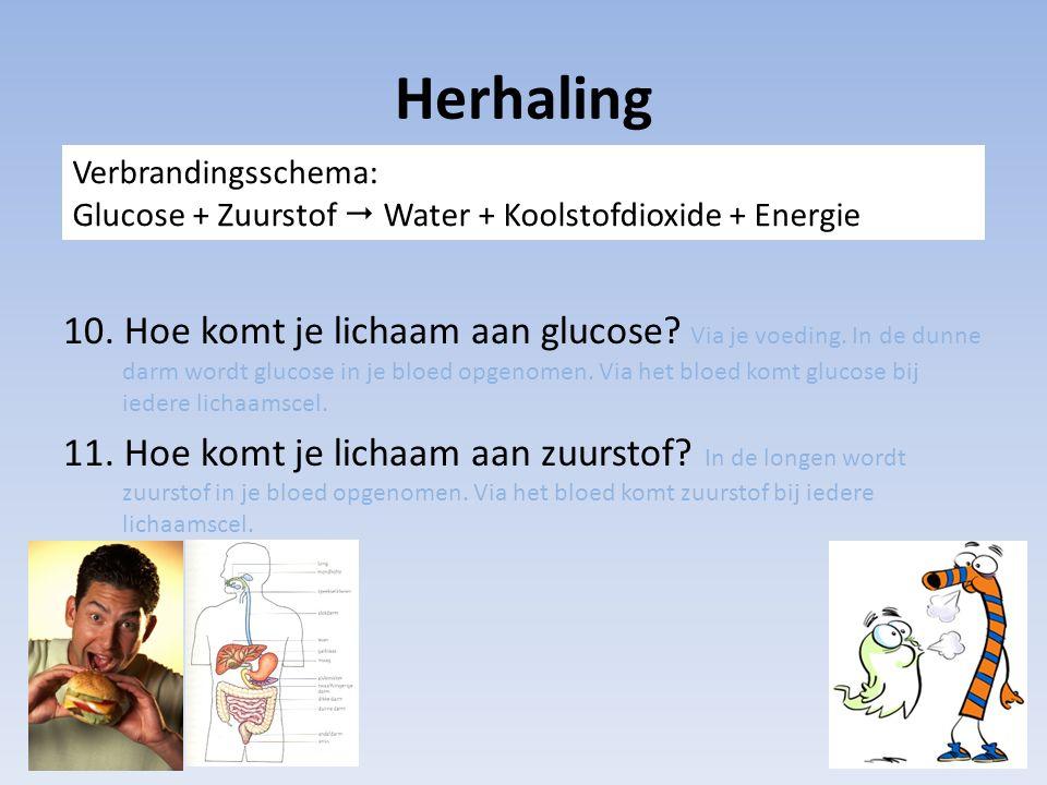 Herhaling Verbrandingsschema: Glucose + Zuurstof  Water + Koolstofdioxide + Energie.