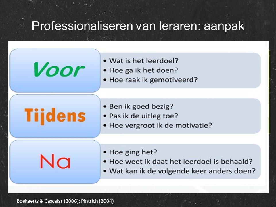 Professionaliseren van leraren: aanpak