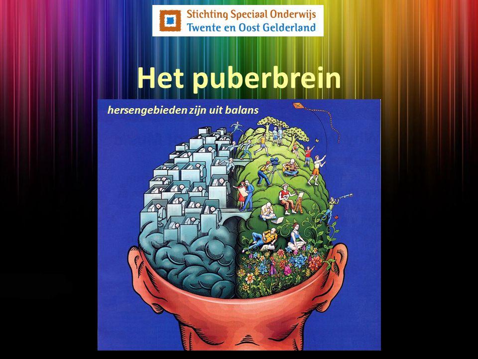 hersengebieden zijn uit balans