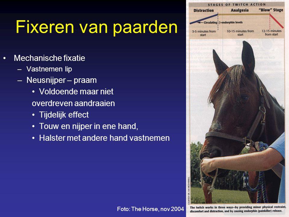 Fixeren van paarden Mechanische fixatie Neusnijper – praam