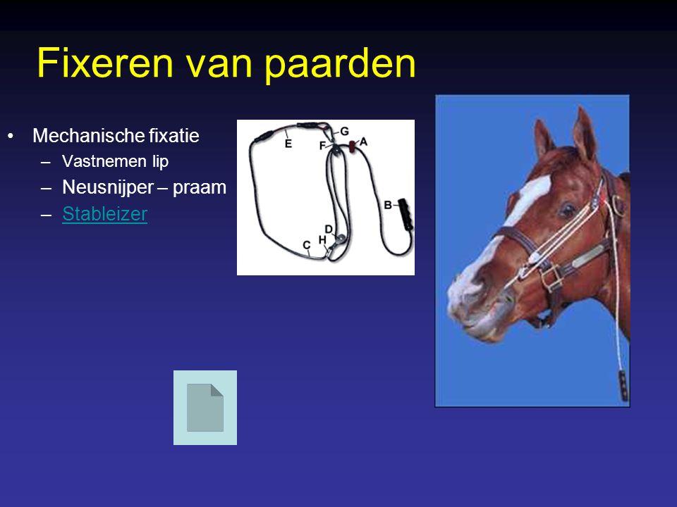 Fixeren van paarden Mechanische fixatie Neusnijper – praam Stableizer