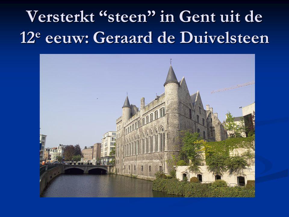 Versterkt steen in Gent uit de 12e eeuw: Geraard de Duivelsteen