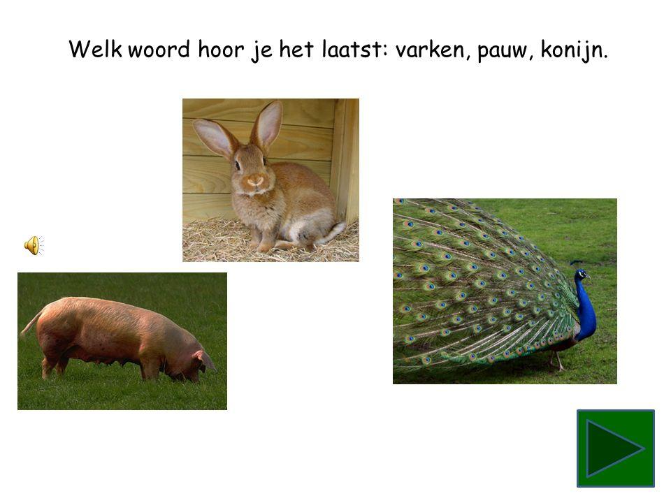 Welk woord hoor je het laatst: varken, pauw, konijn.