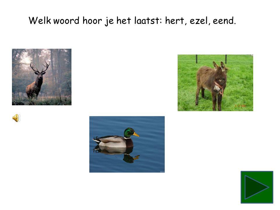 Welk woord hoor je het laatst: hert, ezel, eend.