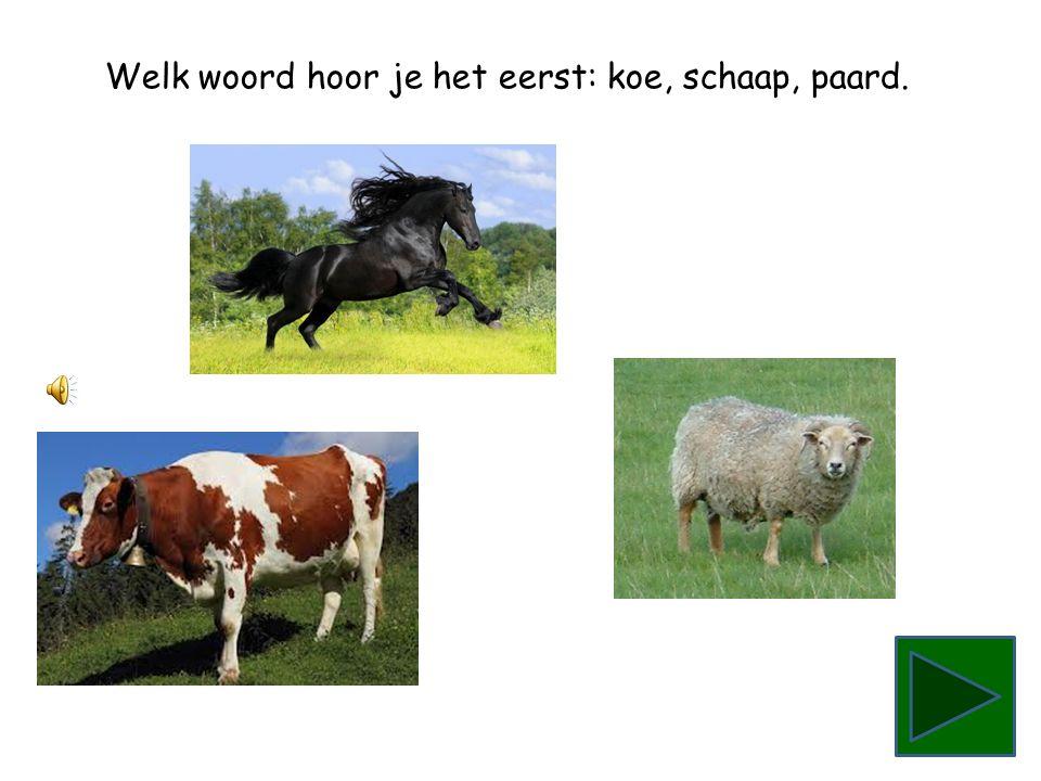 Welk woord hoor je het eerst: koe, schaap, paard.