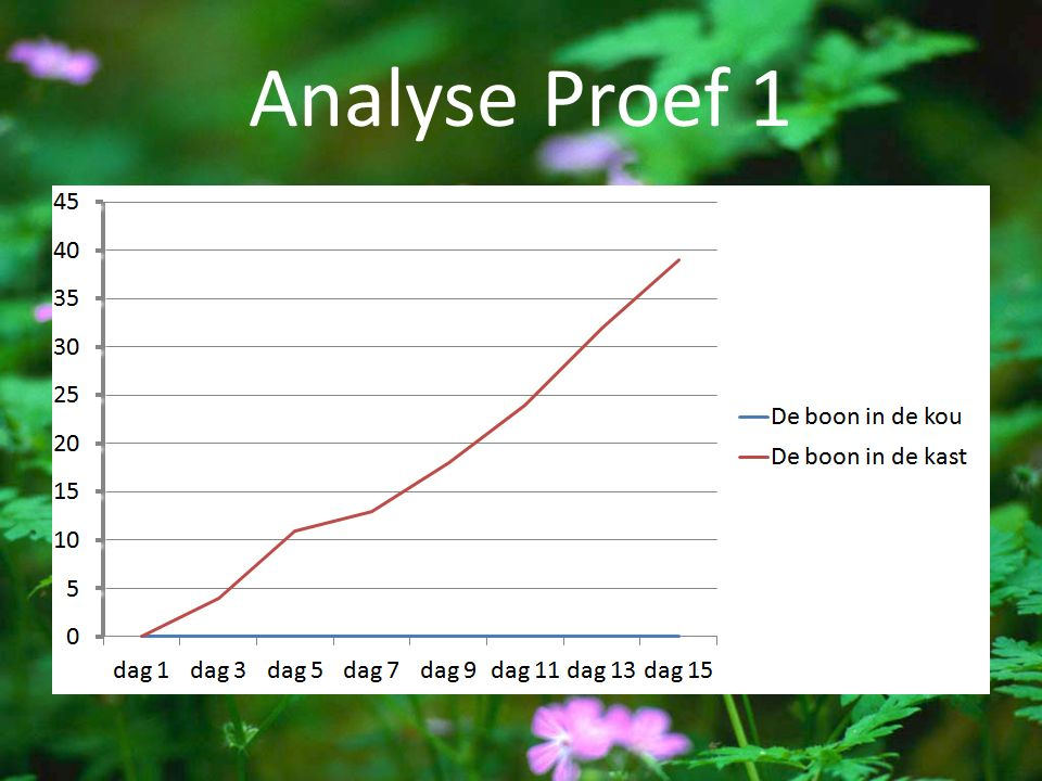 Analyse Proef 1