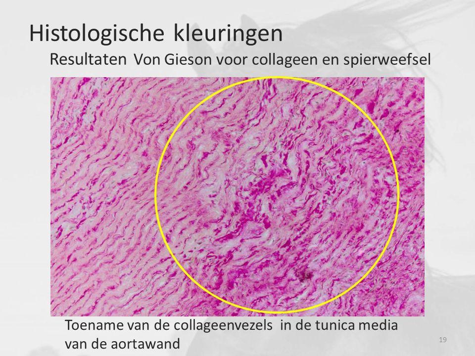 Histologische kleuringen