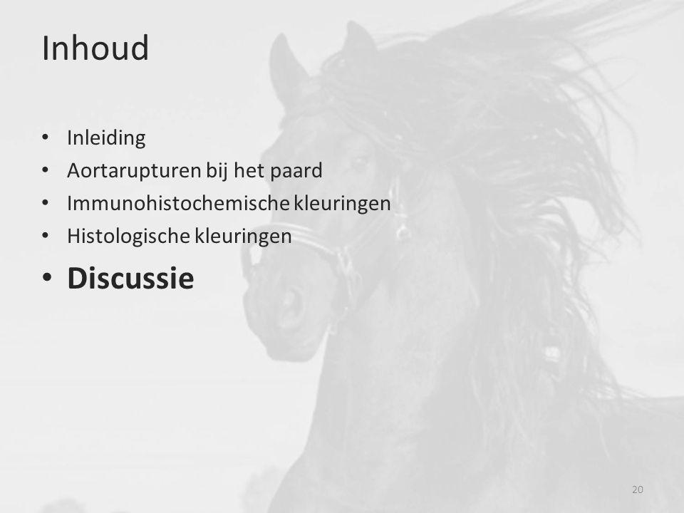 Inhoud Discussie Inleiding Aortarupturen bij het paard