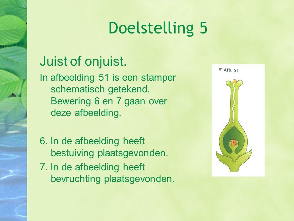 Doelstelling 5 Juist of onjuist.