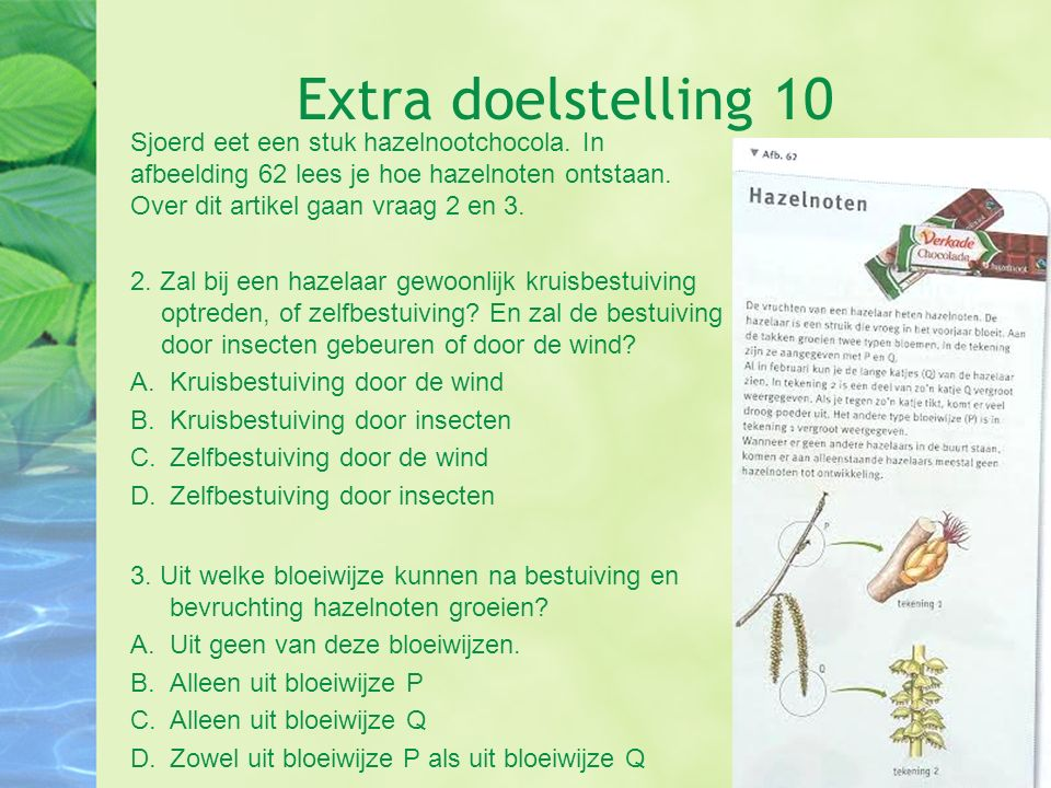 Extra doelstelling 10 Sjoerd eet een stuk hazelnootchocola. In afbeelding 62 lees je hoe hazelnoten ontstaan. Over dit artikel gaan vraag 2 en 3.
