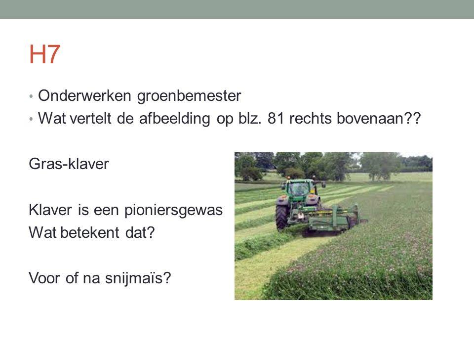 H7 Onderwerken groenbemester