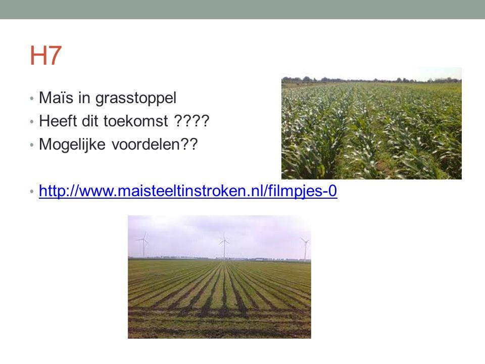 H7 Maïs in grasstoppel Heeft dit toekomst Mogelijke voordelen