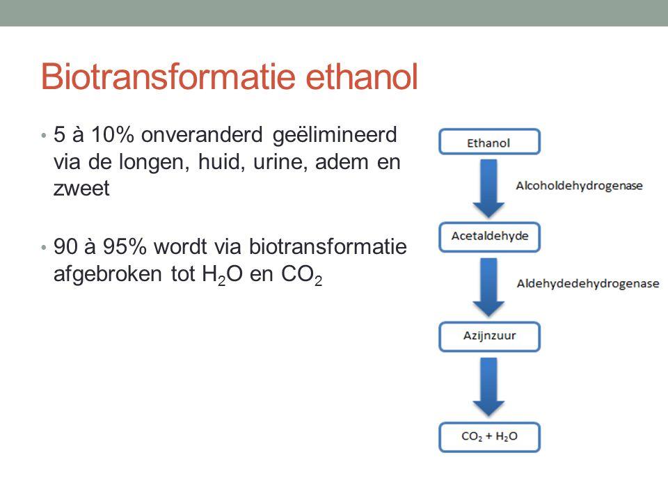 Biotransformatie ethanol