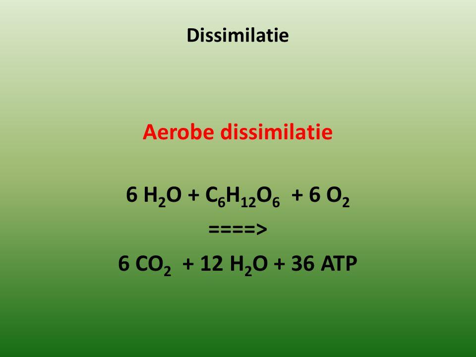 Aerobe dissimilatie 6 H2O + C6H12O6 + 6 O2 ====>