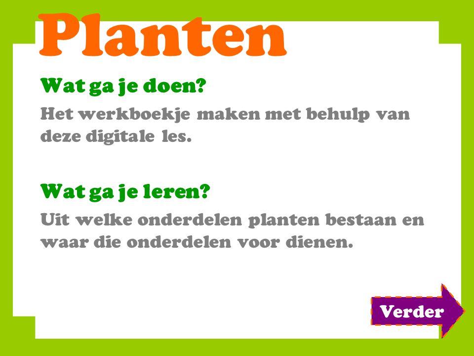 Planten Wat ga je doen Wat ga je leren
