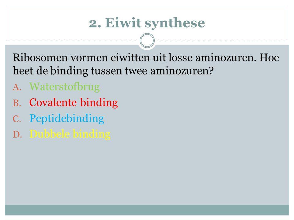 2. Eiwit synthese Ribosomen vormen eiwitten uit losse aminozuren. Hoe heet de binding tussen twee aminozuren