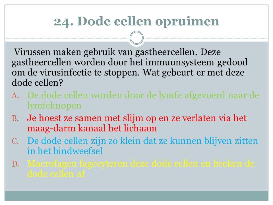 24. Dode cellen opruimen