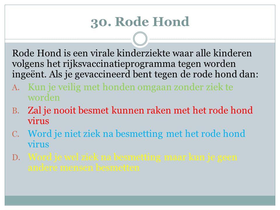 30. Rode Hond
