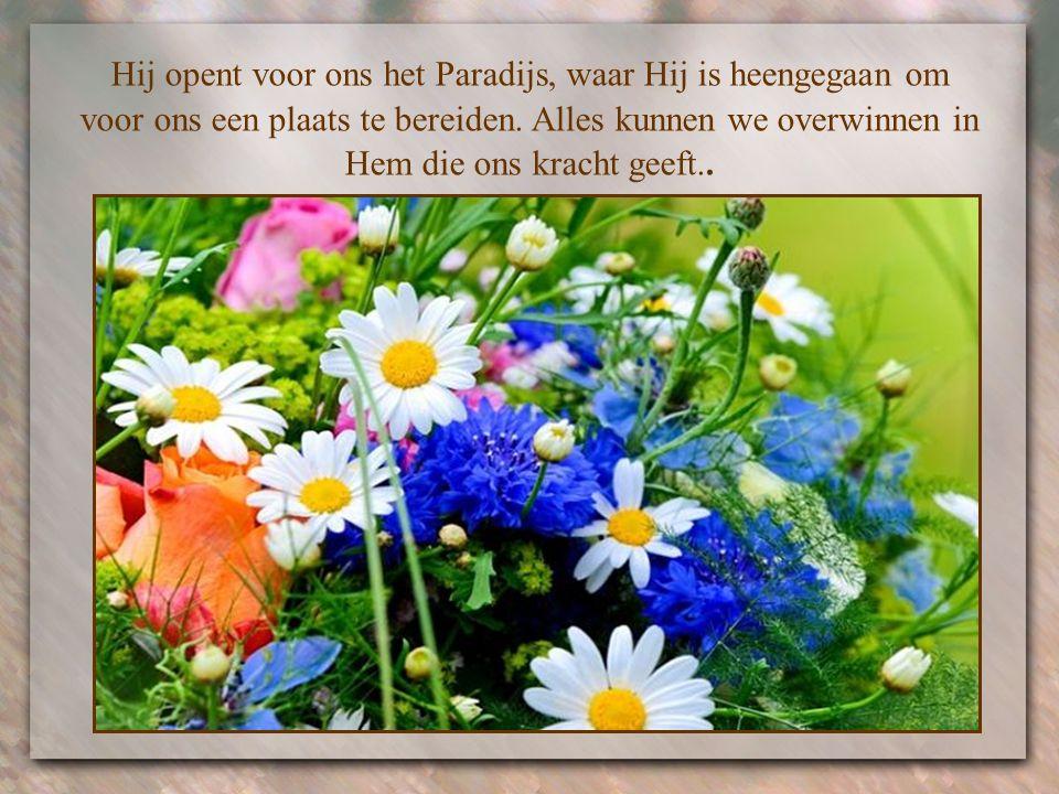 Hij opent voor ons het Paradijs, waar Hij is heengegaan om voor ons een plaats te bereiden.