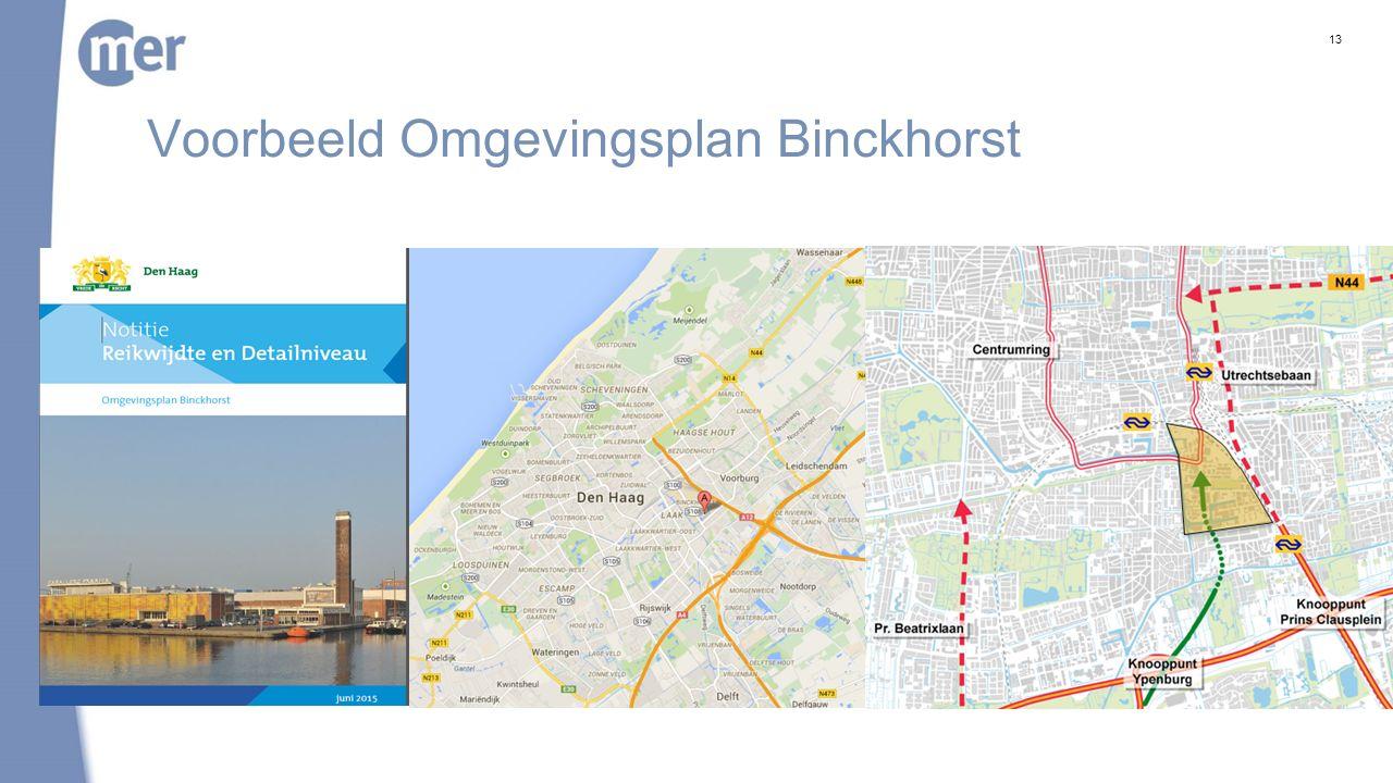 Casus Binckhorst Wensen gemeente Den Haag organische ontwikkeling