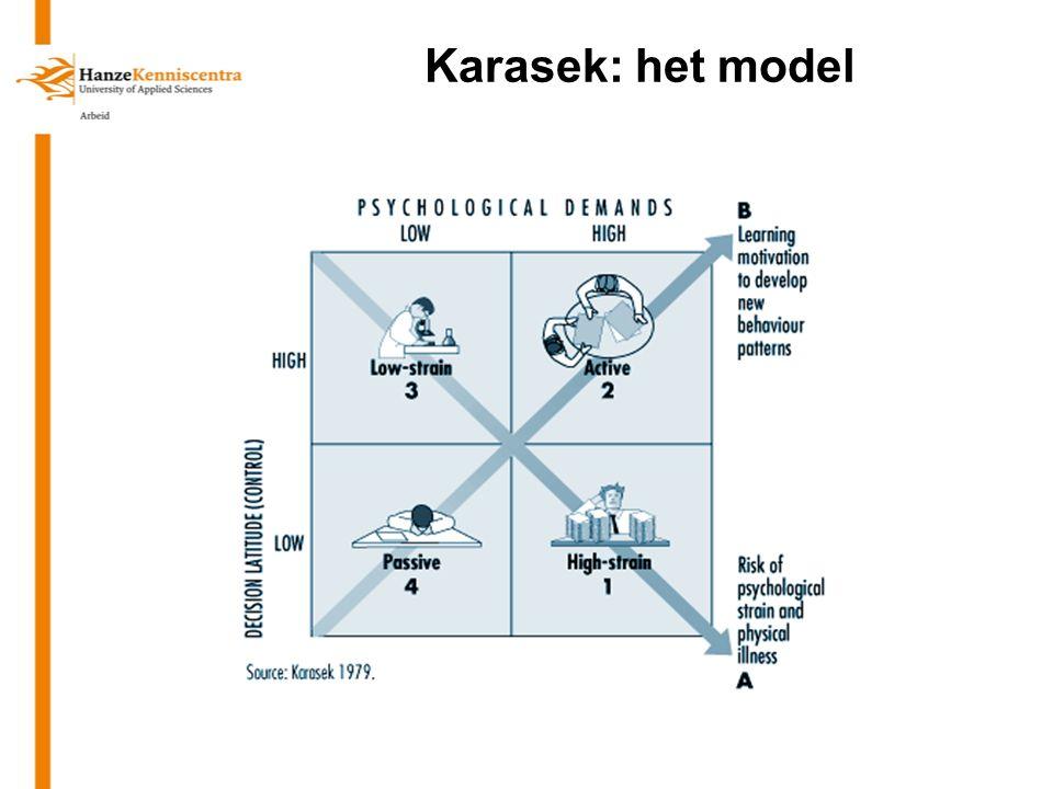Karasek: het model