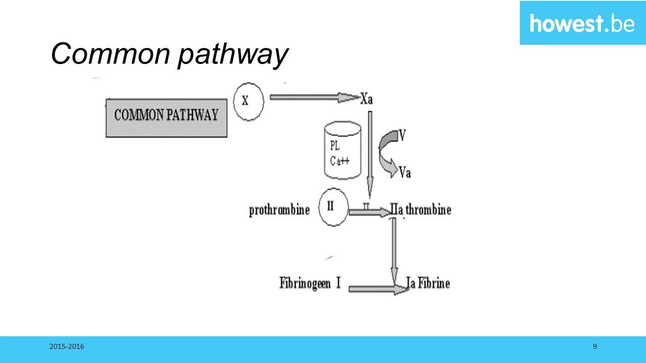 Common pathway 2015-2016
