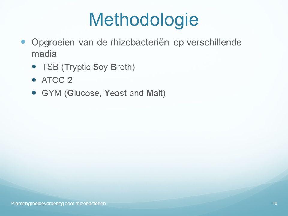 Methodologie Opgroeien van de rhizobacteriën op verschillende media