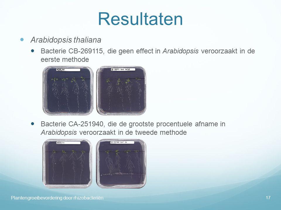 Resultaten Arabidopsis thaliana