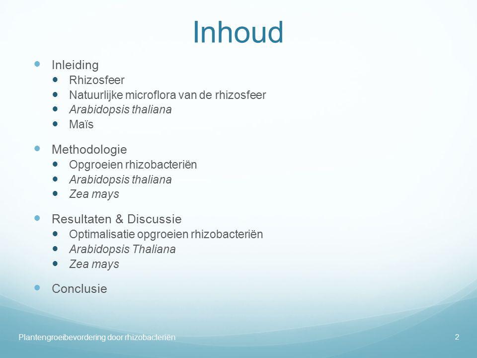 Inhoud Inleiding Methodologie Resultaten & Discussie Conclusie
