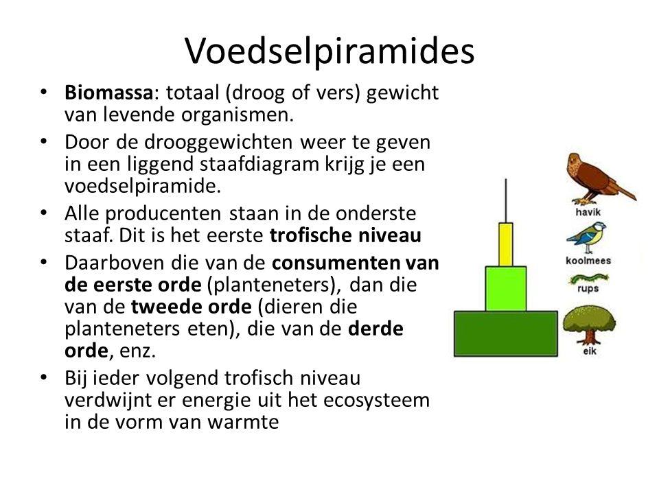 Voedselpiramides Biomassa: totaal (droog of vers) gewicht van levende organismen.