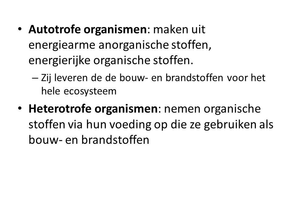 Autotrofe organismen: maken uit energiearme anorganische stoffen, energierijke organische stoffen.