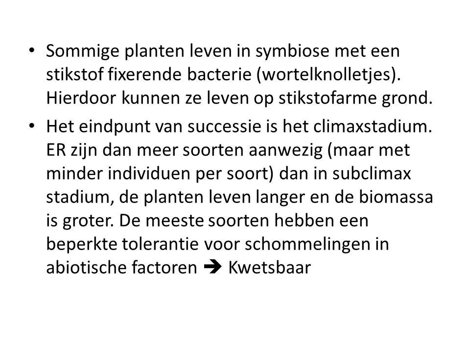Sommige planten leven in symbiose met een stikstof fixerende bacterie (wortelknolletjes). Hierdoor kunnen ze leven op stikstofarme grond.