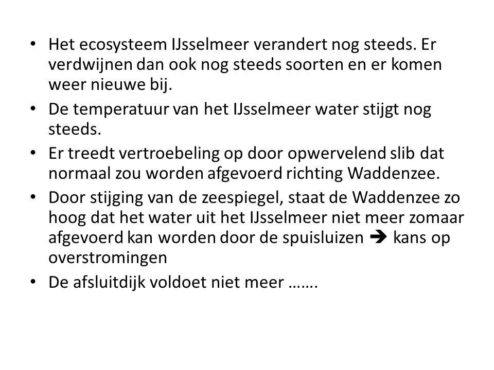 Het ecosysteem IJsselmeer verandert nog steeds