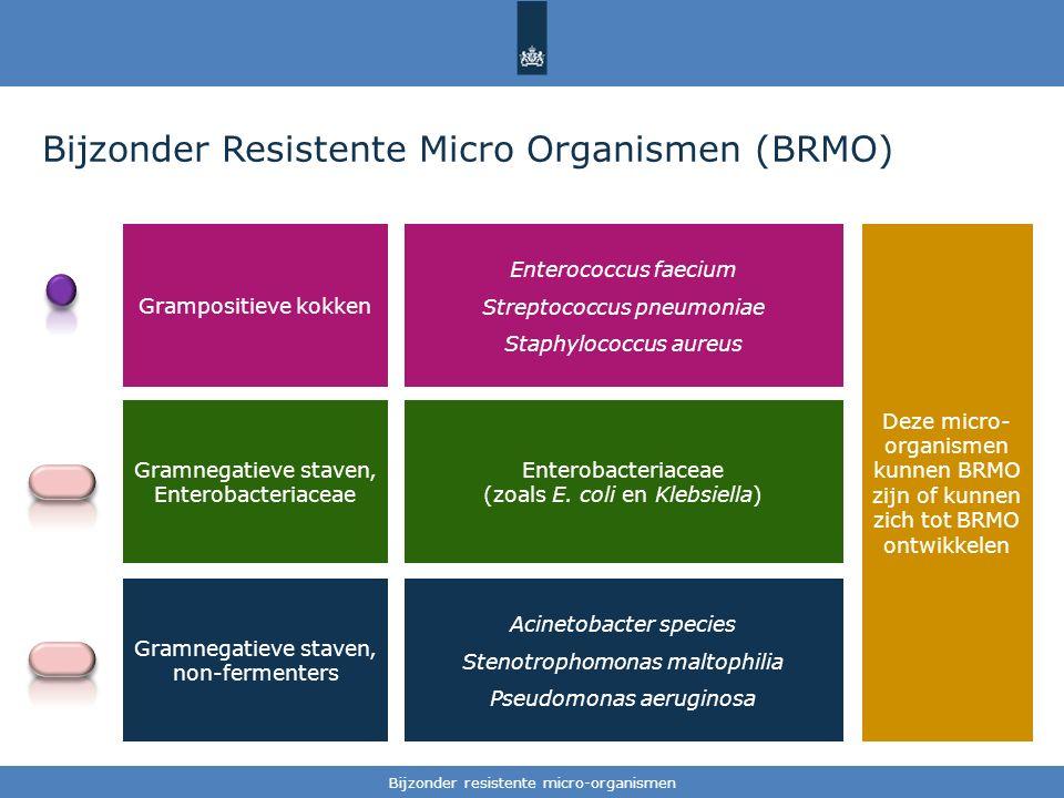 Bijzonder Resistente Micro Organismen (BRMO)