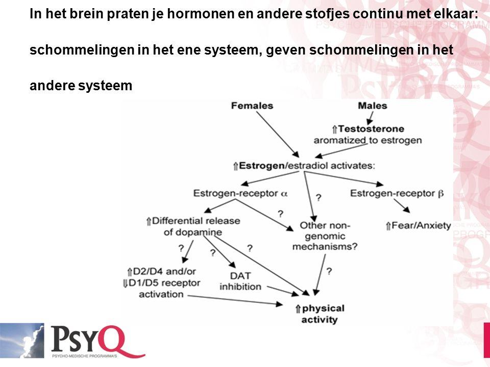 In het brein praten je hormonen en andere stofjes continu met elkaar: schommelingen in het ene systeem, geven schommelingen in het andere systeem