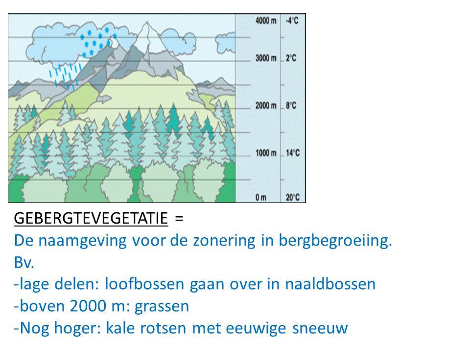 GEBERGTEVEGETATIE = De naamgeving voor de zonering in bergbegroeiing. Bv. lage delen: loofbossen gaan over in naaldbossen.