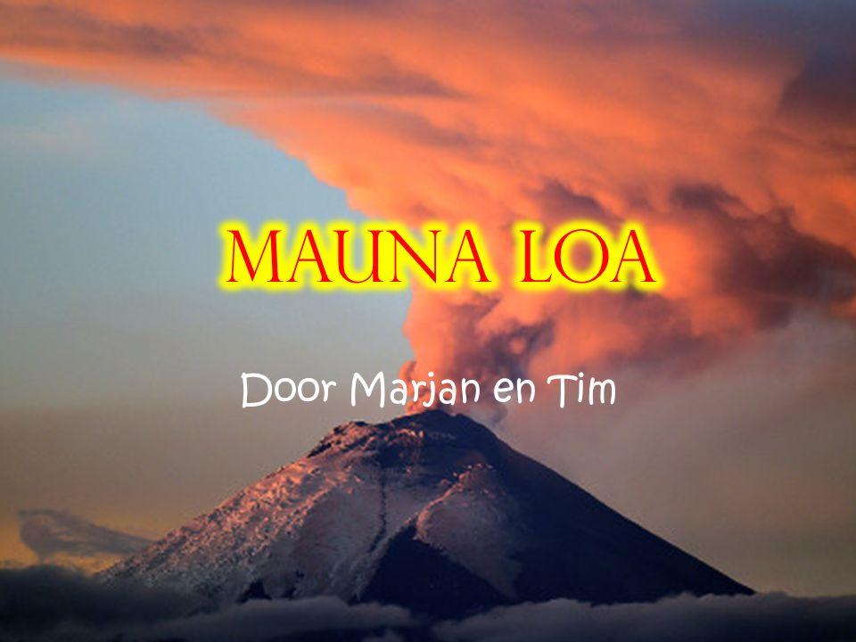 Mauna Loa Door Marjan en Tim