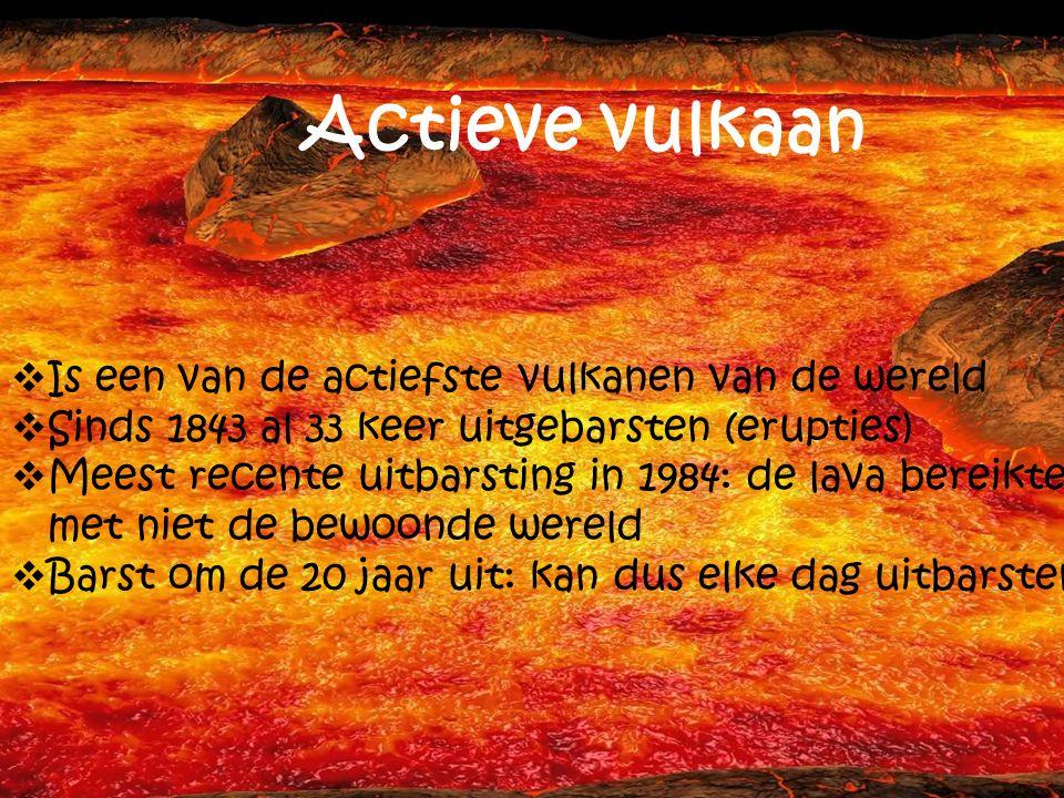 Actieve vulkaan Is een van de actiefste vulkanen van de wereld